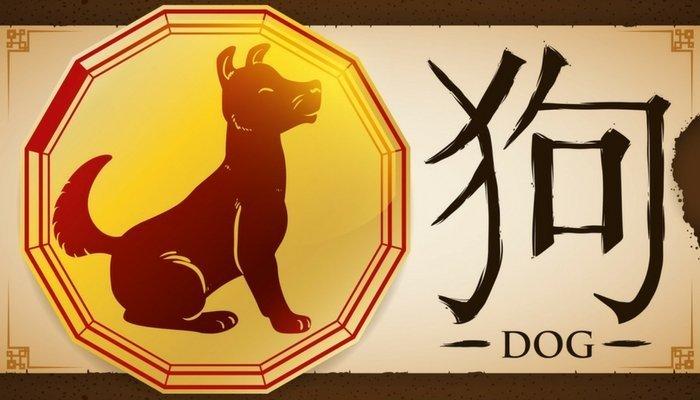 Horoscop chinezesc: 2018 este anul cainelui, cum ne va influenta